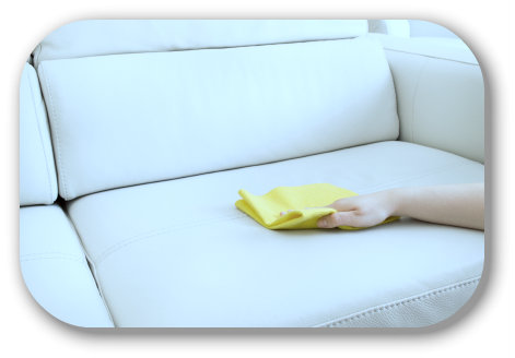 Professional Leather Sofa Cleaning
