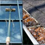 Window and Gutter Cleaning Service